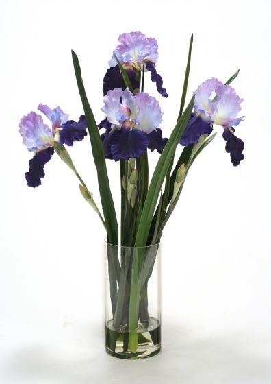 Waterlook (R) Blue-Violet Irises w/ Grass Blades in Glass Cylinder