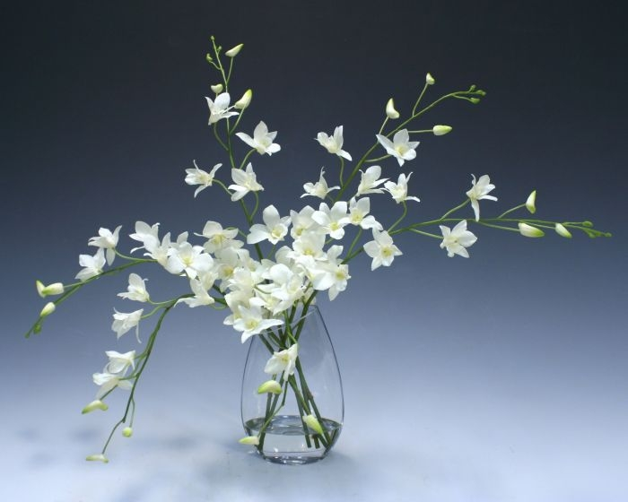 Waterlook (R) White Dendrobium Orchid In Angled Glass Vase