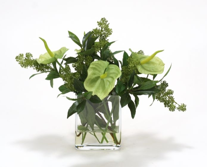 Waterlook (R) Green Antherium With Green Skimmia Berries In Rectangle Glass Vase