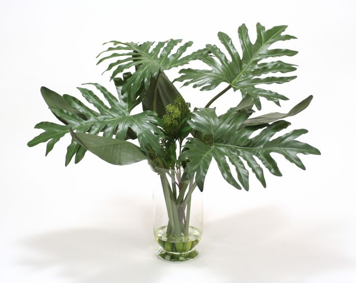 Waterlook (R) Philodendron and Exotic Bird of Paradise in Glass Vase