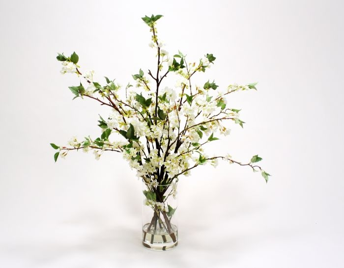 Waterlook (R) White Cherry Blossoms in Clear Glass Cylinder