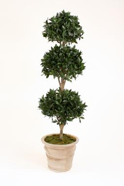 Sweet Bay Triple Ball Topiary in Large Natural Stone Colored Terra Cotta Garden Planter