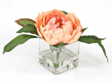 Waterlook ® Silk Peach Peony in Square Glass (Pack 3)