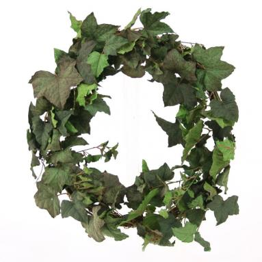 DIY Foliage Wreath 18'L Artificial Frosted Green Ivy Wreath