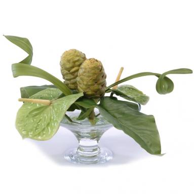Waterlook ® Silk Green Anthuriums with Protea and Leaves in a Glass Compote