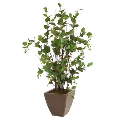 Silk Elm Floor Plant in Square Bronze Metal Contempo Planter