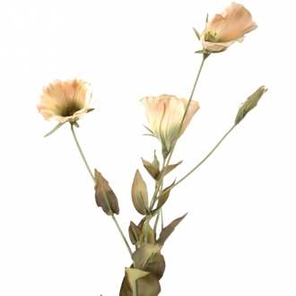 DIY Flower 23'L Ivory Artificial Lisianthus x 3 Blooms, 1 Bud, 10 Leaves
