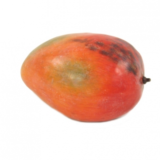 Fruit (Pack of 12) Luscious Tropical Red-Yellow Mangos