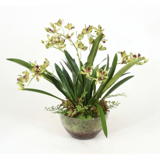Green Silk Vanda Orchids, Maiden Hair Fern in Glass Bowl