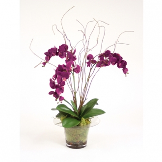 Silk Violet Orchid with Kiwi Vines, Birch Twigs and Preserved Orchid Bark in Glass Planter