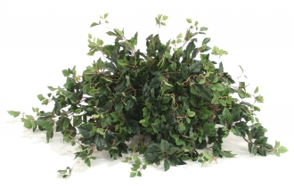 Topper with Silk Kangaroo Ivy Desk Top Plant on Tile