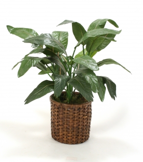 Tropical Silk Floor Plant In Split-Rattan Basket