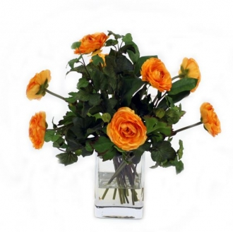 Waterlook (R) Gold Ranunculus with Ivy and Basil in Square Glass Vase