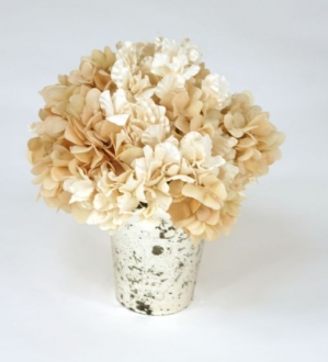 Waterlook (R) Ivory Hydrangeas in Mercury Glass Vase