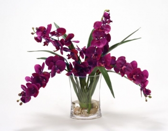 Waterlook (R) Violet Phaleanopsis Orchids With Foliage In Narrow Glass Vase