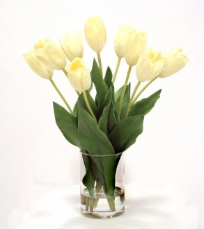 Waterlook (R) White Dutch Tulips in Glass Cylinder