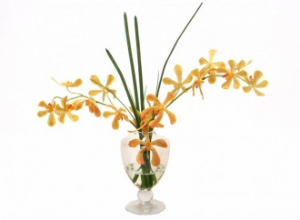 Waterlook (R) Yellow-Orange Vanda Orchids, Grass in Glass Urn