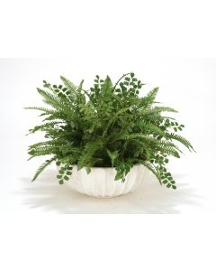 Fern mixture in Ivory Highland Bowl