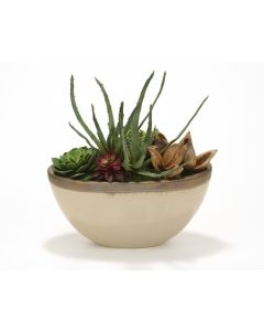 Succulent Garden In Glazed Tan Ceramic Oval Planter