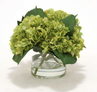 Waterlook (R) Green Hydrangeas, Laurel Leaves in Glass Cylinder