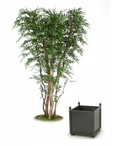 Indoors Trees Buy Online | Artificial Trees on 1001Shops