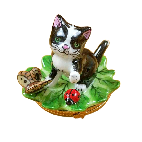Cat on leaf with ladybug and butterfly