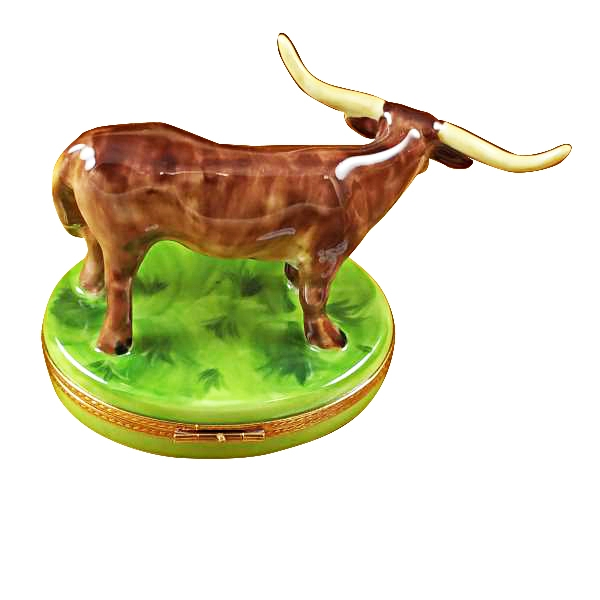 Longhorn with removable insert