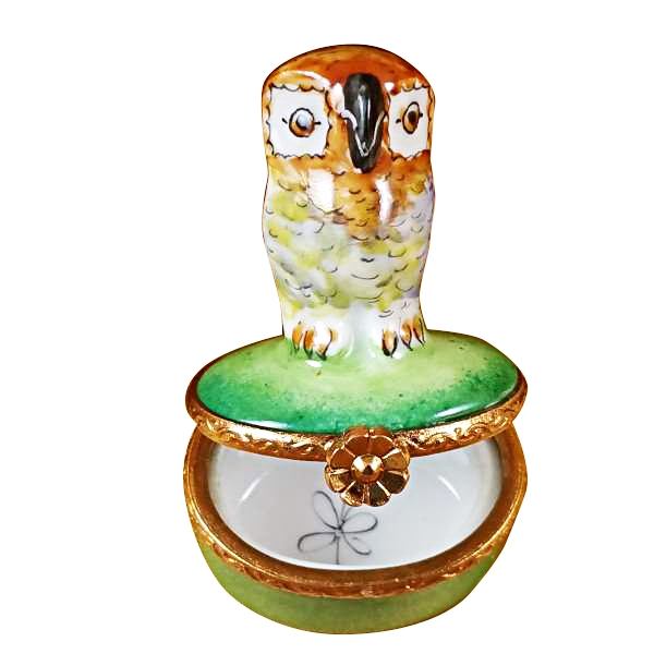 SMALL OWL ON GREEN BOX