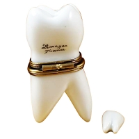 LARGE WHITE BABY TOOTH W/REMOVABLE TOOTH