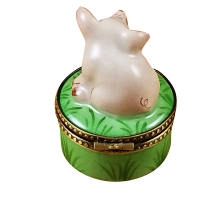 Mini pig on green base