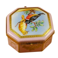 Studio collection - Birds and butterflies
