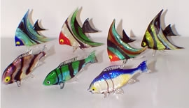 Fish School Colorfull assortment