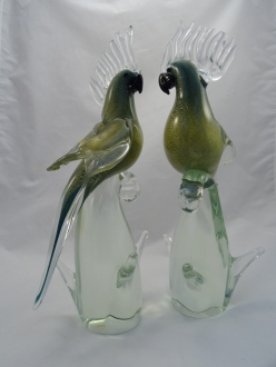 Murano parrot green with clear crest pair