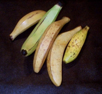 Assorted Bananas