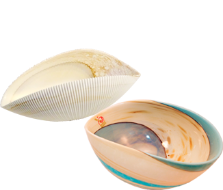 here are two concepts that form these wonderful handiworks. Some of these bowls replicate the matchless designs of sea shells, while the others emulate the glossy appearance of mother of pearl.
